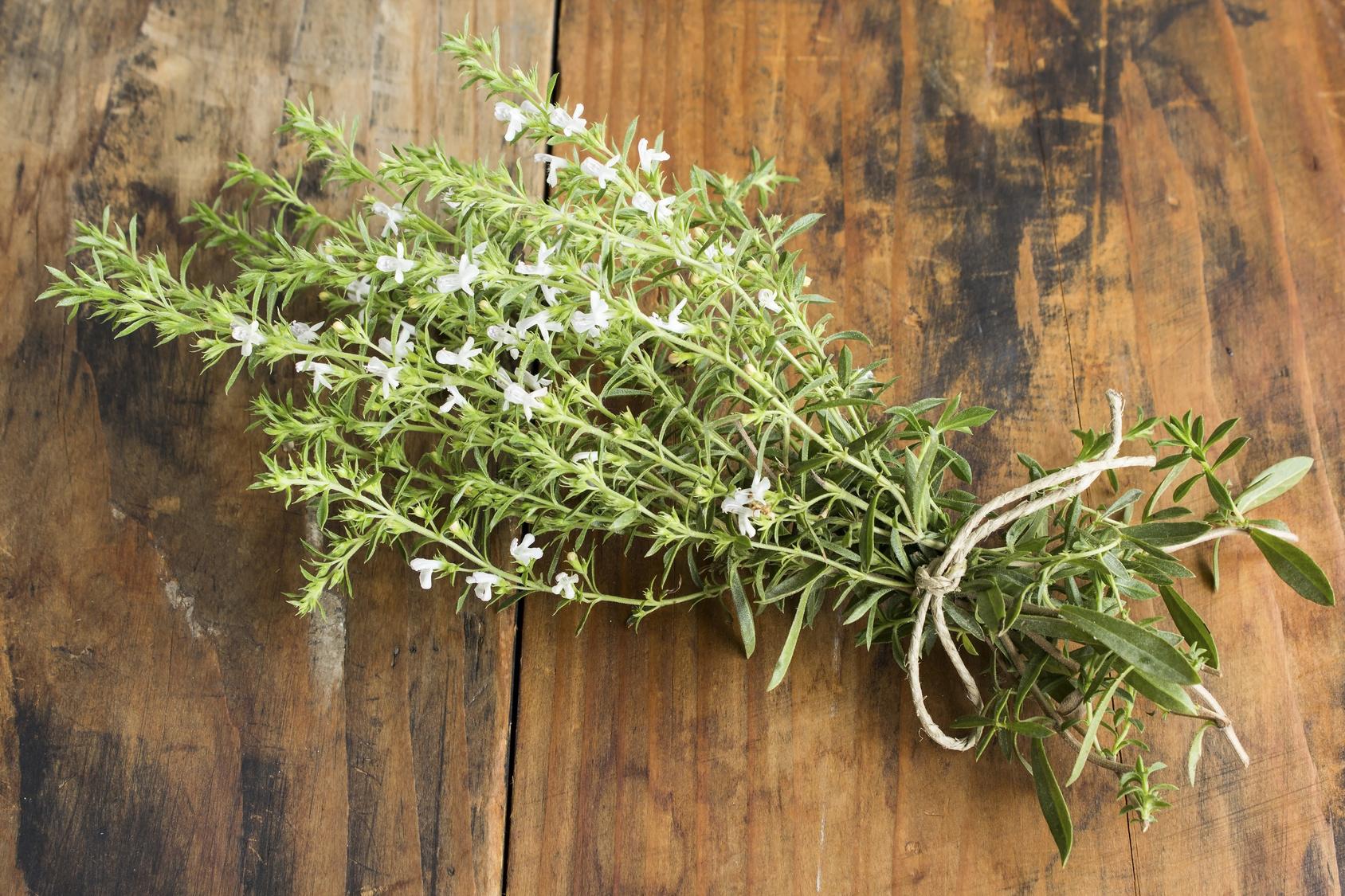 ces plantes sauvages d'été que l'on peut consommer - blog bio, bien