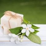 Le lait de jument, un trésor de santé et de beauté !