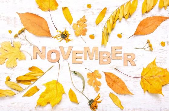 Les Essentiels Du Mois De Novembre Blog Bio Bien Etre Et Sante