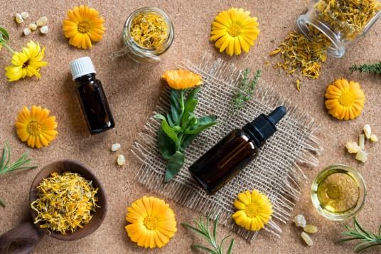 Les huiles essentielles pour mieux se concentrer - Blog bio, bien ... 38fe7357f4b