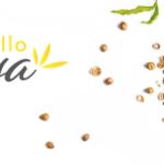 [FOCUS SUR…] Hello Joya, une gamme de produits à base de chanvre
