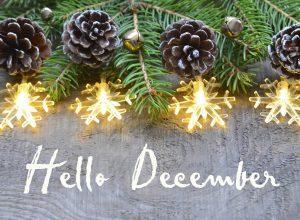 Les essentiels de décembre