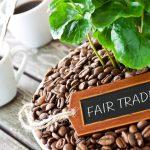 La quinzaine du commerce équitable fête ses 20 ans!