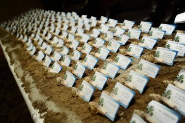 This bride wanted a beach theme to her wedding and made these escort cards herself!