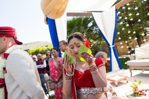 Indian Bengali bride holding betel leads in front of her face at her Indian, Hindu wedding.