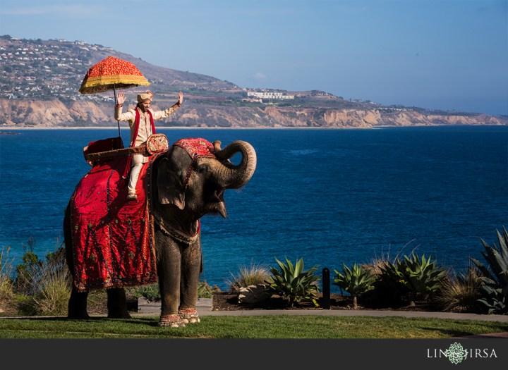 Indian wedding elephant baraat at Terranea Resort