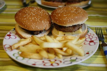 Hamburger - 15
