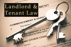 Need Landlord-Tenant Representation Florida