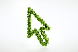 Nachhaltigkeit im E-Commerce – Grün als Wettbewerbsfaktor?