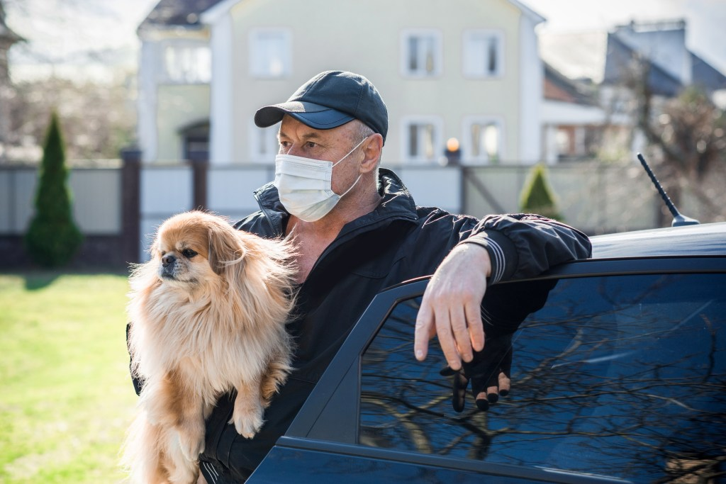 Man in face mask holding dog.