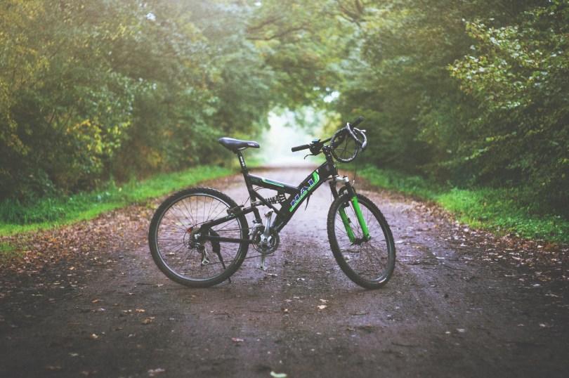 bicicleta en el bosque