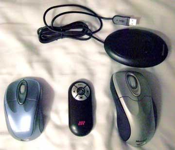 mouses.jpg