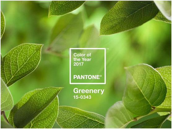 Pantone-colour-2