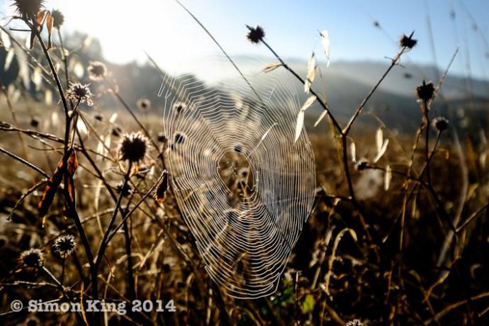 tuscany-2014-072