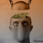 Cannabis e psicosi. Sesta parte
