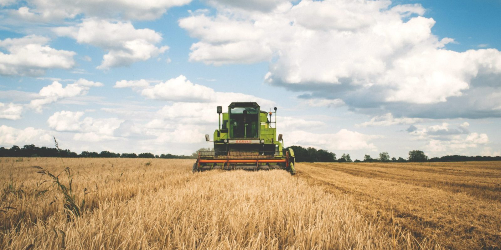 Russian FOB wheat prices are on the rise