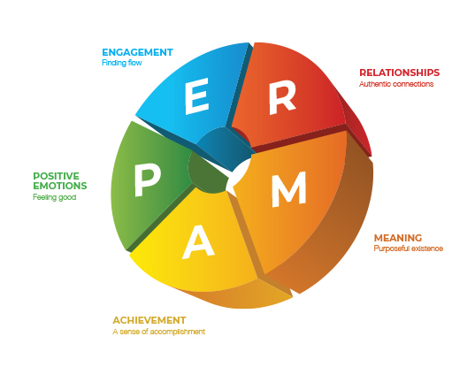 PERMA Model (โดย Martin Seligman)    Skooldio Blog - ออกแบบ UI ให้เข้าถึงใจลูกค้า! ด้วย 5 Framework