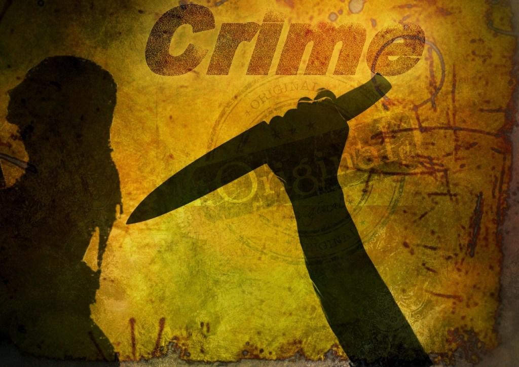 https://pixabay.com/en/book-cover-crime-knife-woman-1252524/