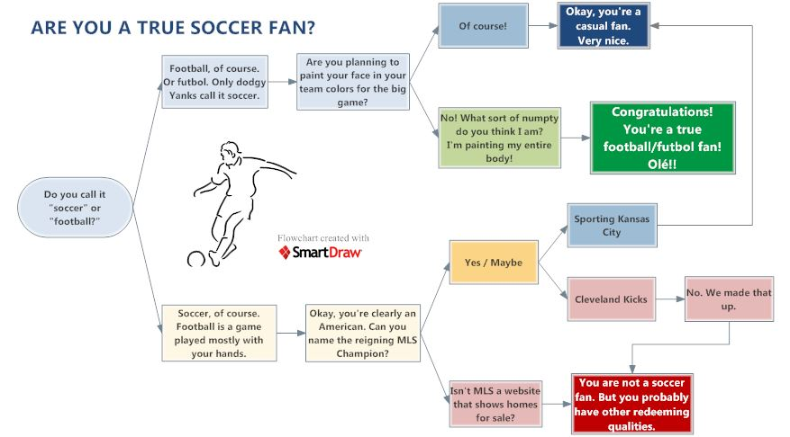 Are you a true soccer fan - flowchart