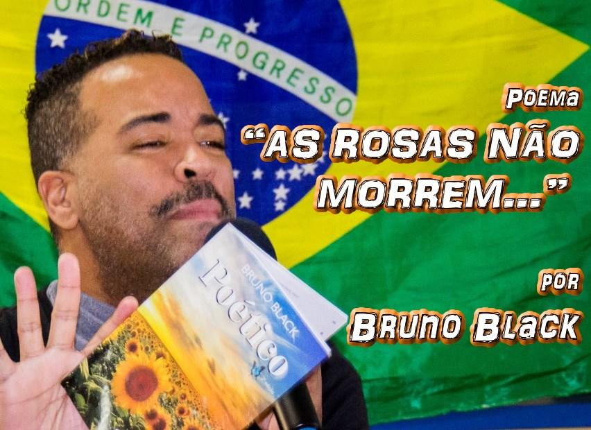 """03 - Poema """"AS ROSAS NÃO MORREM..."""" por Bruno Black - Pílulas de Poesia"""