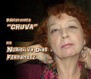 """04 - Poema """"5 HAIKAIS SOBRE A CHUVA"""" por Nurisilva Dias Fernandez - Pílulas de Poesia"""