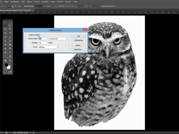 Photos rastern mit Photoshop - eine Anleitung