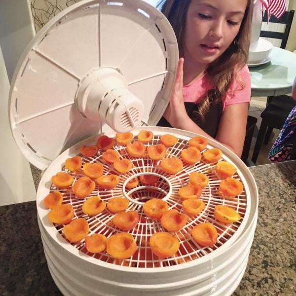 Maggie making dried apricots