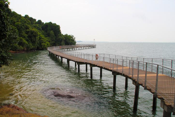 Chek Jawa Pulau Ubin Island