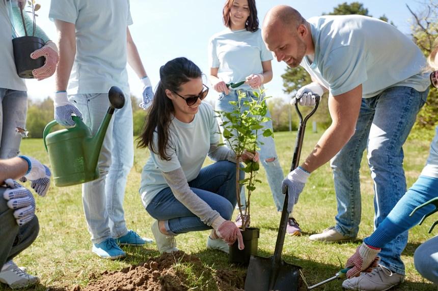Un emprendimiento social ambientalista puede obtener sus recursos de una empresa que lo apadrine.