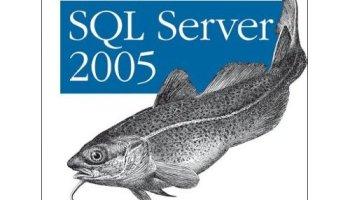 SQLAuthority News - Book Review - Pro T-SQL 2005 Programmer's Guide (Paperback) programmingsqlserver2005