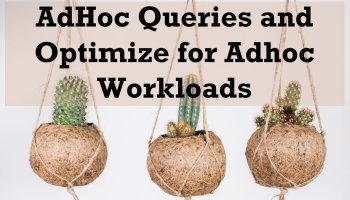Optimize for Ad Hoc Workloads - SQL in Sixty Seconds #173 adhocqueries