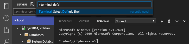 SQL Operations Studio - Terminal - default shell 01