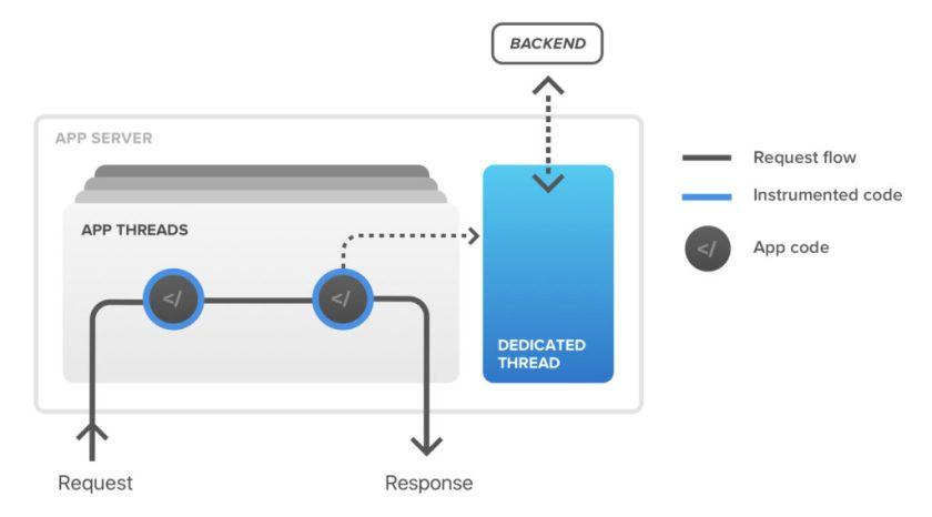 Runtime Application Self-Protection (RASP)