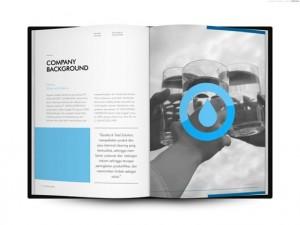 company-profile-29b