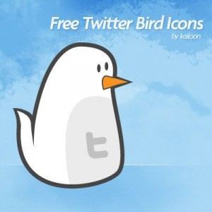 twitter-birdy