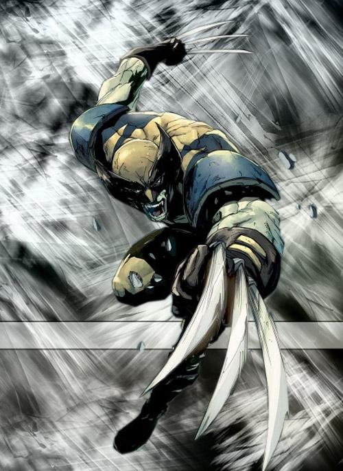 Wolverine_by_InSoMnIaK604