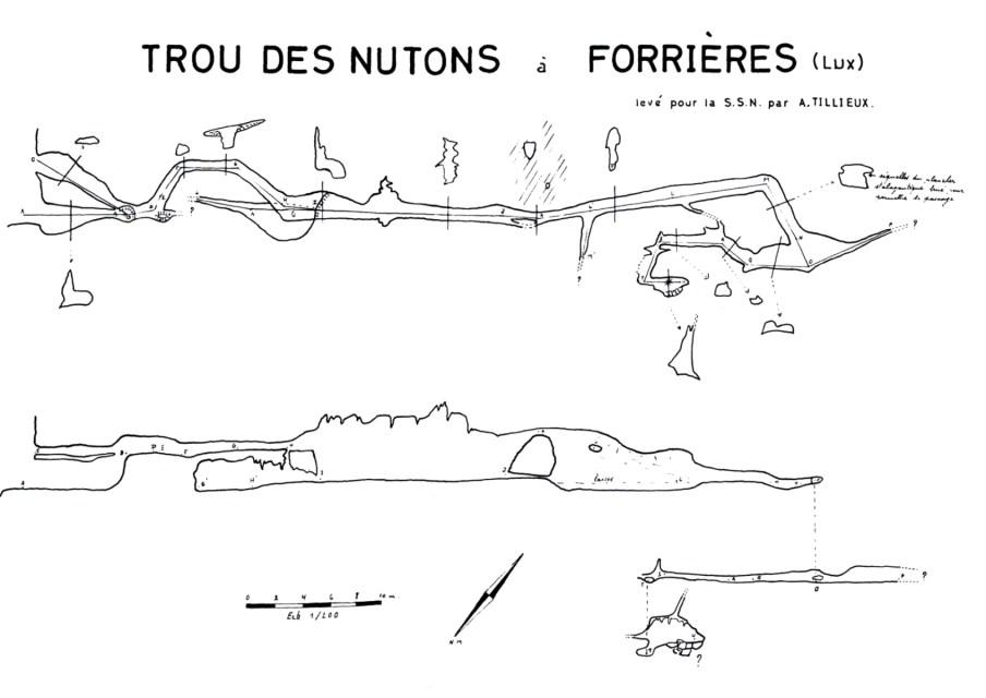 NutonsForrieres1962z