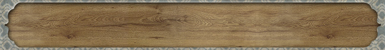 ETSY_BANNER_BOOKPLATE_BLUE