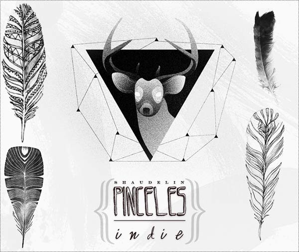 Free Photoshop Brushes Indie Feathers Deer