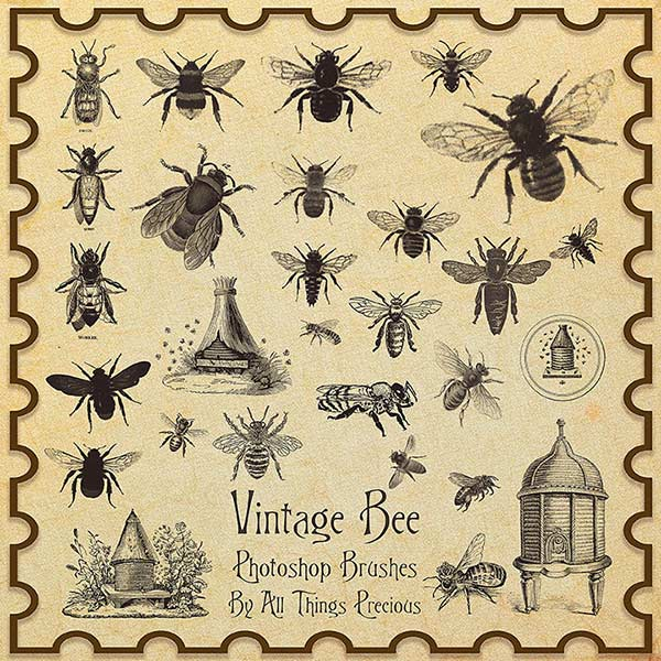 vintage brushes, bumble bee brushes, bee brushes, vintage bees, bumble bee vintage clipart