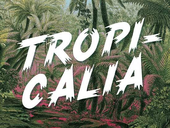 poster font, free fonts, vintage poster font, vintage ad font, free font, free vintage brush font