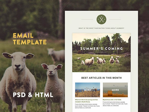 free email template, hipster email template, woodsy email template, co-op email template, health food store email template,