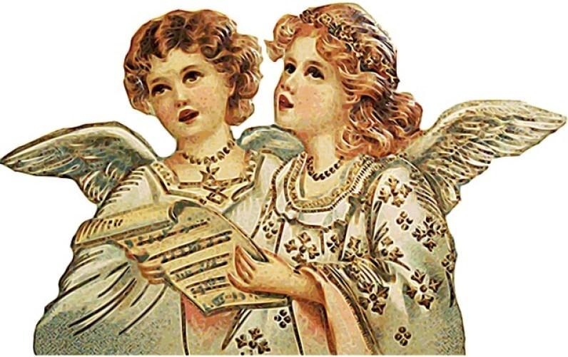 Business Angels finden