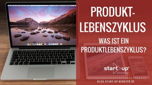 Was ist ein Produktlebenszyklus?