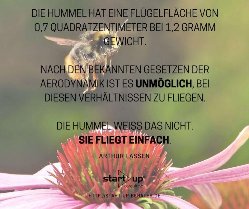 Hummeln können nicht fliegen