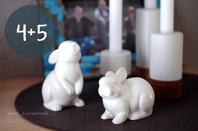 bunny_4+5