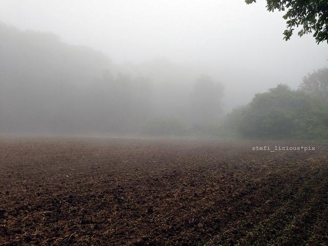 silence_2