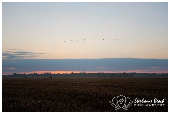 Ottawa Sunrise Stephanie Beach Photography