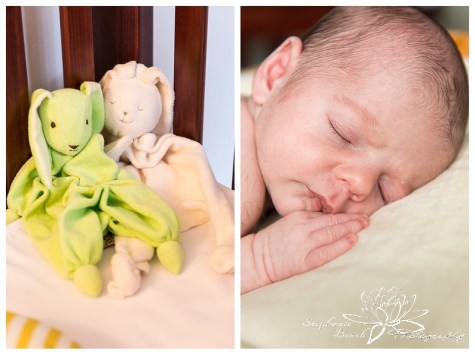 Ottawa Newborn Photoshop Lifestyle Newborn Session Stephanie Beach Photography 02