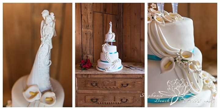 Strathmere Lodge Wedding Stephanie Beach Photography27